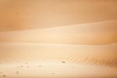 Kubiqi-Wüste
