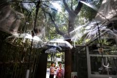 Regenschirmhimmel