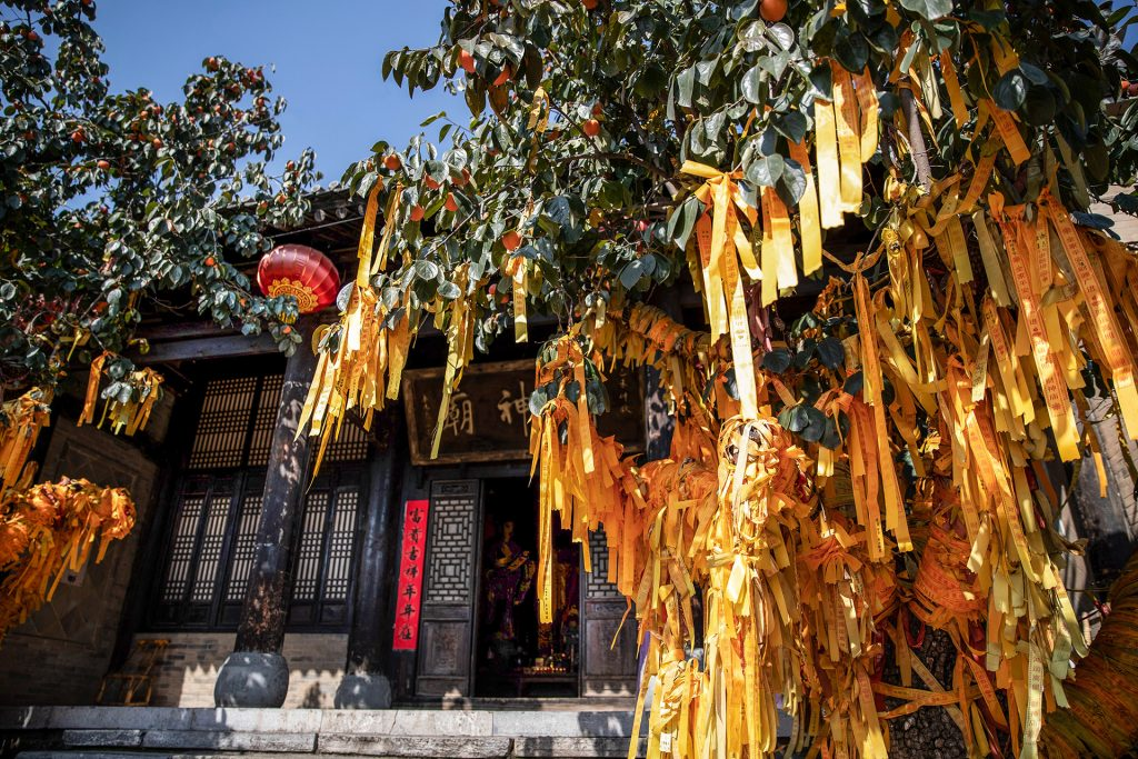 Shaanxi province buddhist tree with yellow ribbons